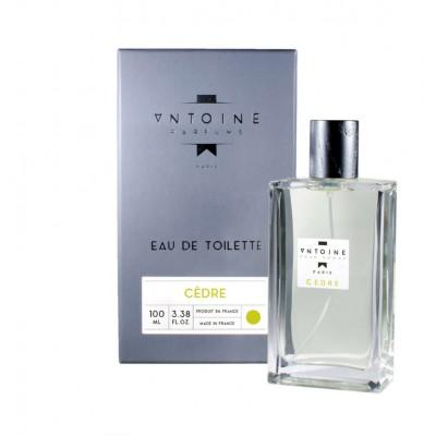 Vyriški kvepalai Antoine Cedre 100 ml